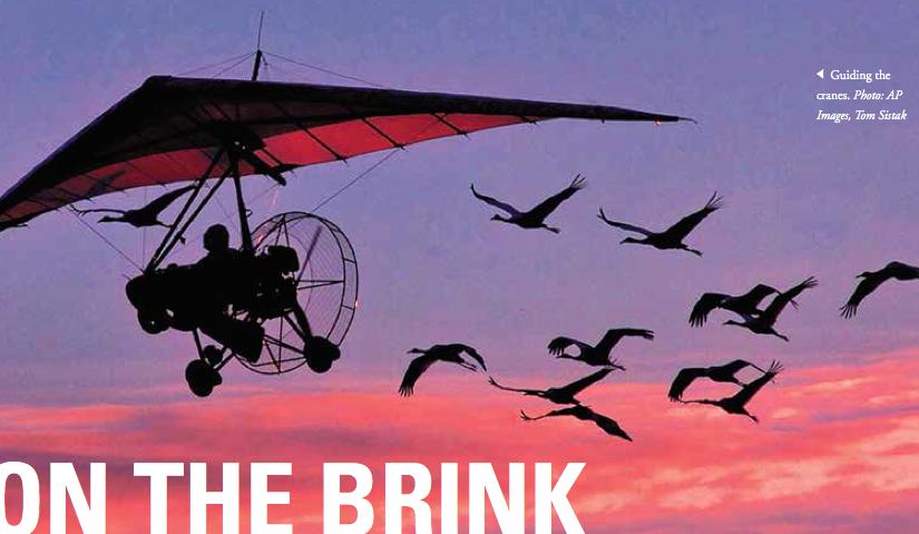 On the Brink – Uniken Magazine,UNSW